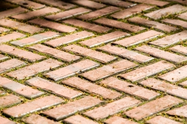 Brick Pavers at Longfellow Garden